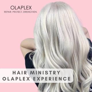 The Olaplex Experience