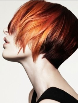 hair-color-trends-2014-colour-hair-ladies-style